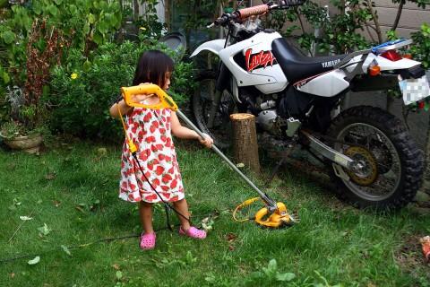 2009年7月14日 芝刈りというより草刈り
