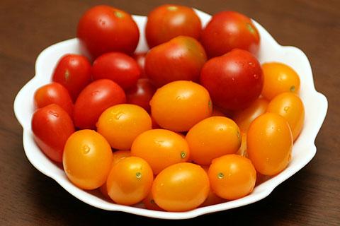 2010年7月20日 今度はミニトマト