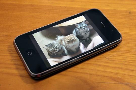 2011年7月1日 水没iPhone復活