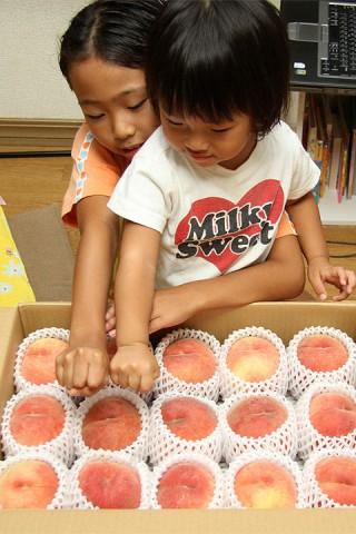 福島の桃とグーを比較