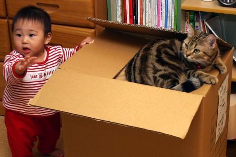2005年10月28日 やっぱり箱が好き
