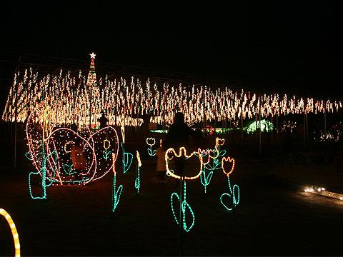 2007年12月21日 足利フラワーパーク
