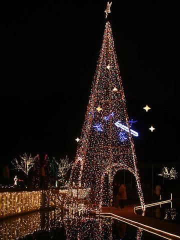 2007年12月24日 足利フラワーパークのイルミネーション