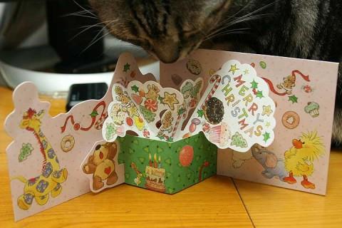 2010年12月21日 クリスマスカード