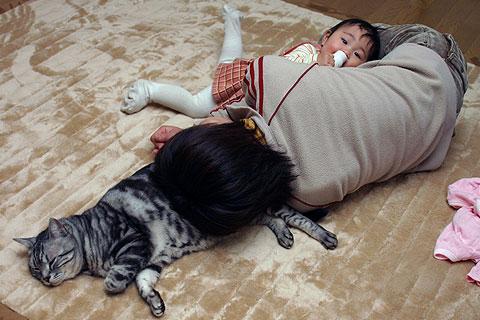 2006年1月31日 枕の枕