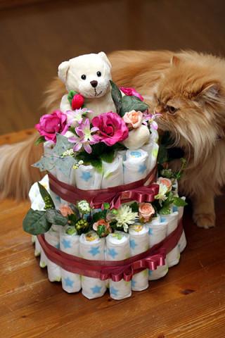2010年2月11日 おむつケーキ