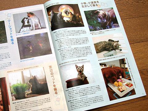 2008年4月19日 よみうりペット 6ページ