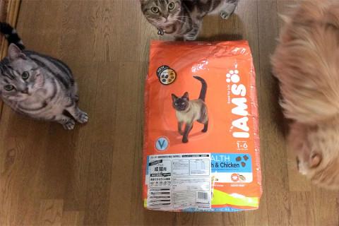 アイムス成猫用フィッシュ10kg